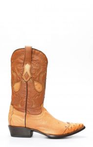 Cuadra boots in ostrich belly with honey toe on shoulder