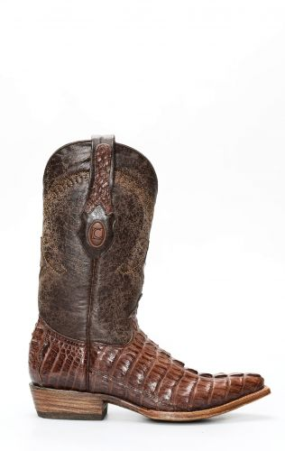 Cuadra Boots en cuir de crocodile, rustique brun foncé pointu