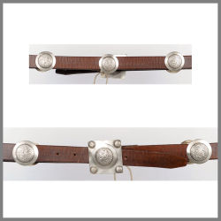 Brown Jalisco belt with round studs and buckle